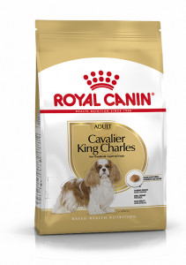 ADULT CAVALIER KING CHARLES ROYAL CANIN