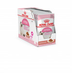 KITTEN SAUCE ROYAL CANIN